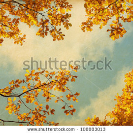stock-photo-old-paper-retro-image-of-autumn-leaves-on-the-sky-background-108883013